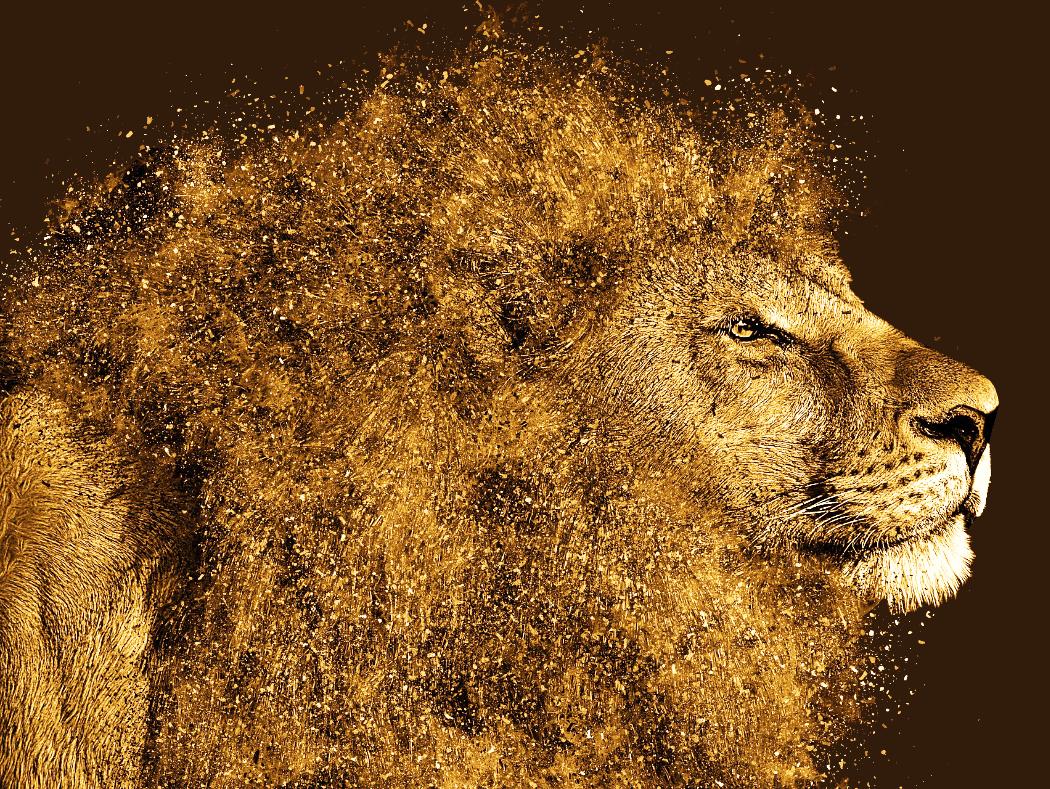 Website Alchemy Lion